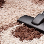 8 Best Vacuums for Long Pile Shag Carpets 2020