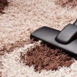 8 Best Vacuums for Long Pile Shag Carpets 2020