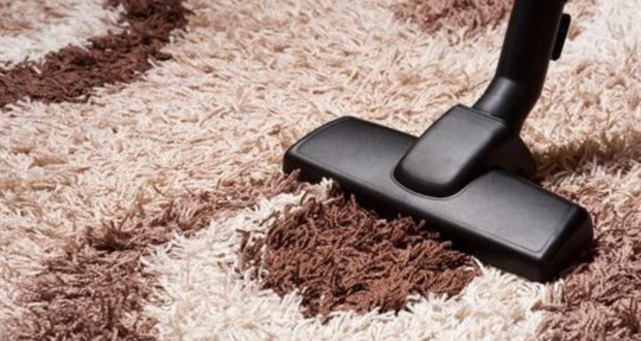 8 Best Vacuums For Long Pile Shag Carpets Our Top Picks