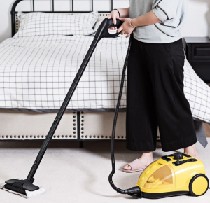 multi-purpose steam cleaner in use